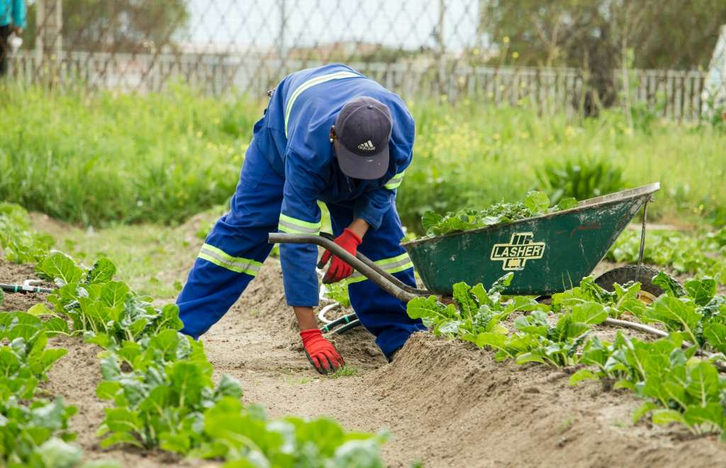 tips for healthy and gentle gardening: clothing